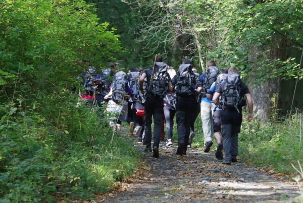 Group heading into the forest with bag packs on their backs to take part in a bespoke hiking experience with Orangeworks