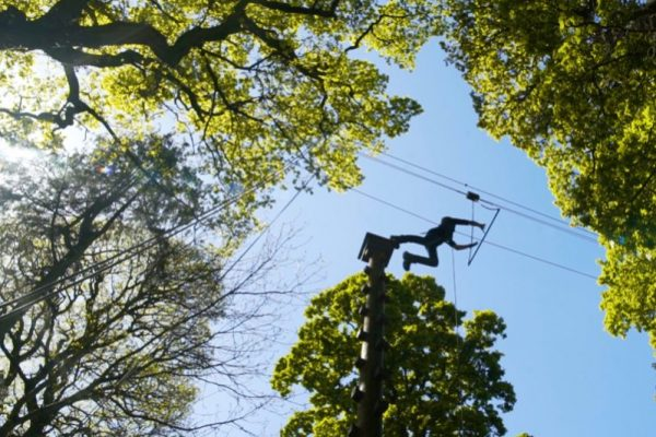 A delegate completing the high ropes course with Orangeworks