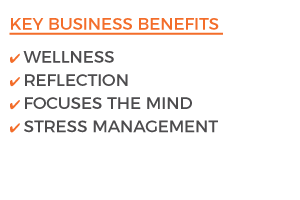 Meditainment Key business Benefits